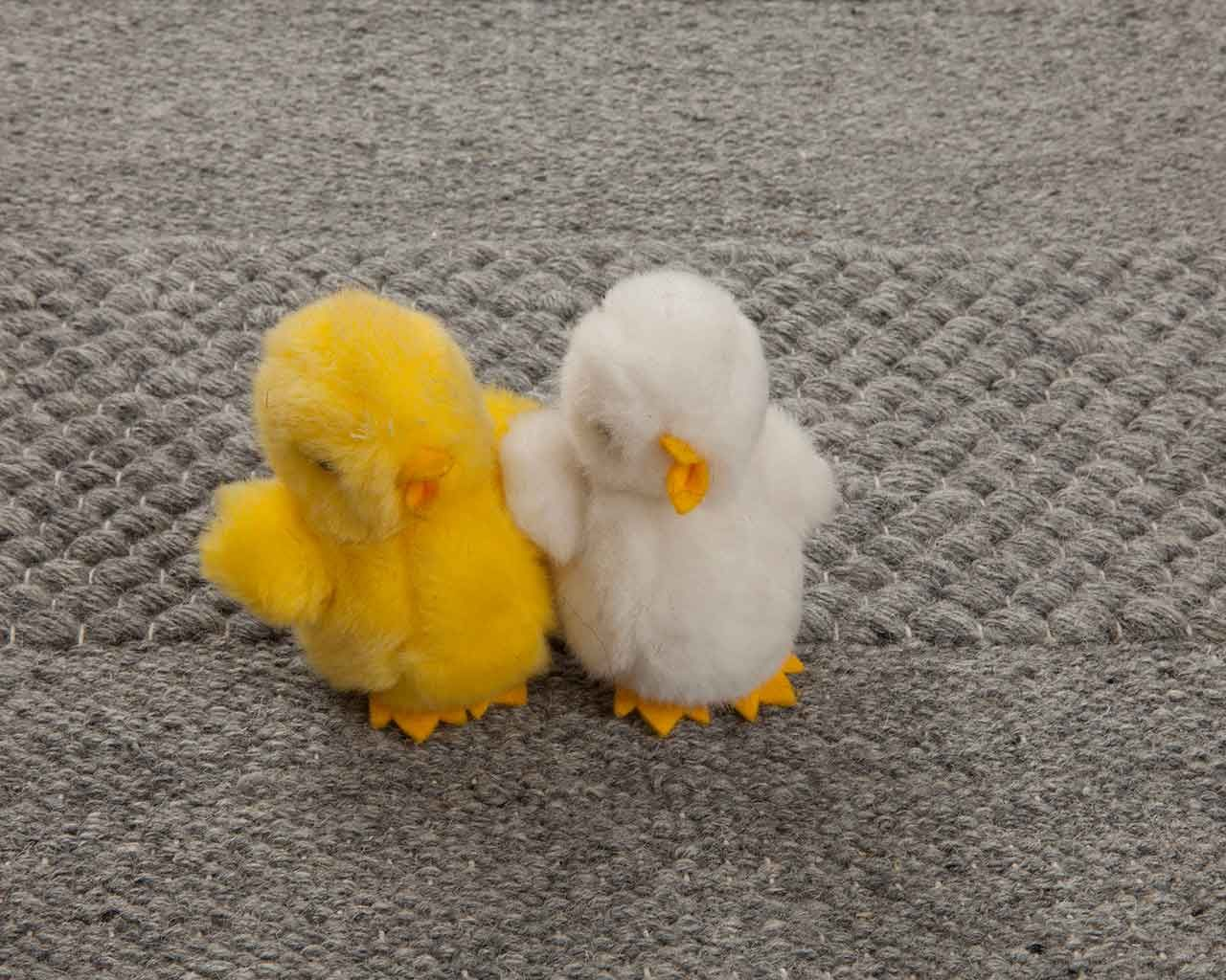 pet carpet chick yellow white grey designlover 1