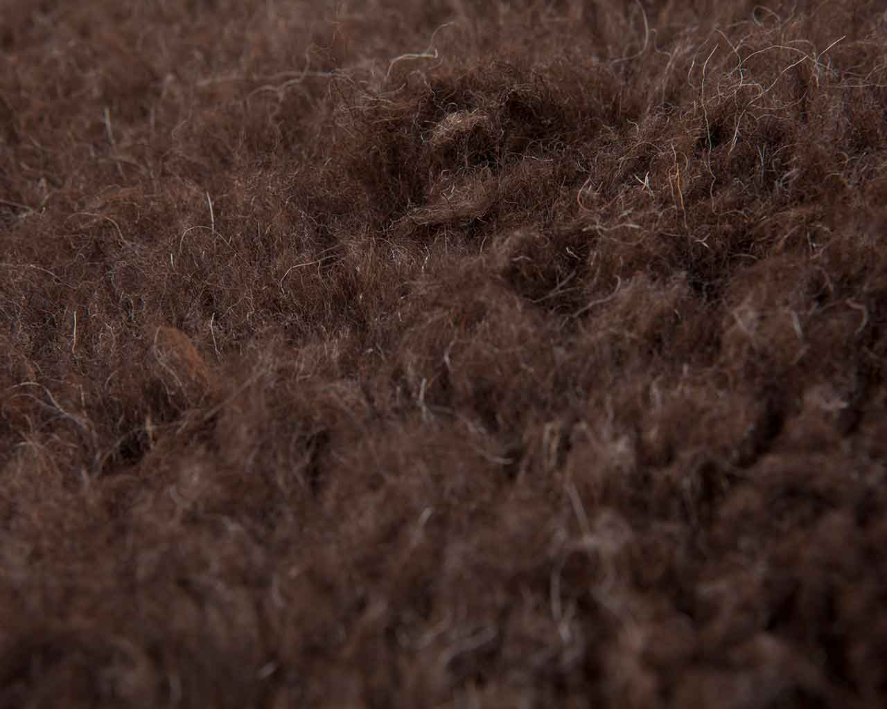 dark brown wool from sheep moroccan 1
